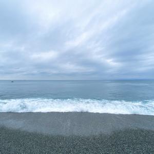 初夏の大磯・照ヶ崎海岸の投げ釣り ベラとカサゴでトムヤムクンを作ろう