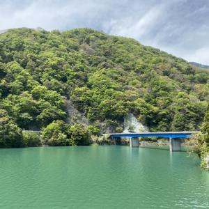 丹沢湖ってどんなところ?美しい山上湖で森林浴のすすめ