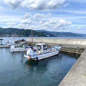 東伊豆/網代・和田木堤防の投げ釣り 塩ジャリメで攻めるシロギス・カワハギ編