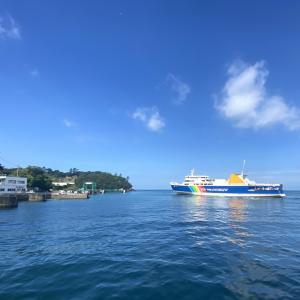 駿河湾/西伊豆・土肥コバルト堤防のライトなカゴ釣り 青物各種五目釣り達成編