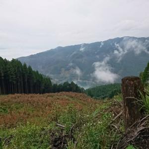 第三回 Mizukami mountain party 参加記録④