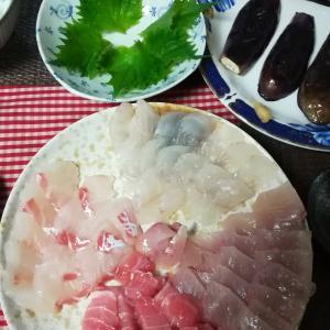 #71 長崎屋鮮魚Oh, Sashimi! Fishmonger in Muroran city