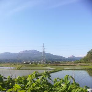 #182 World Geopark&paddy field seen from 伊達Onsen