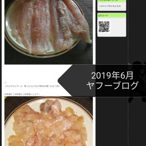 #199 Large flounder last June! 昨年のヒラメ釣果も6月♪