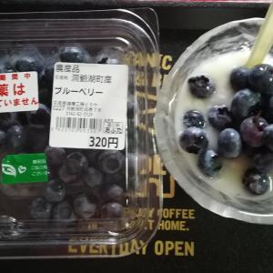 #244 毎朝ブルーベリー Blueberries from道の駅あぷた洞爺湖町