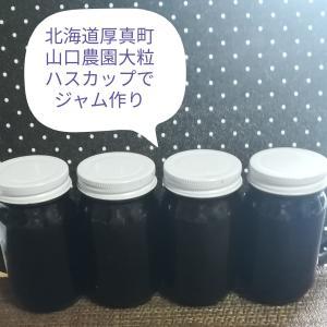 #248 Hascup Berry jamハスカップ自家製ジャム毎夏作ってた(北海道厚真町産)