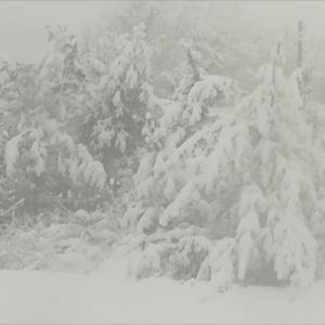 朝起きると世界は見事に冬景色、北海道