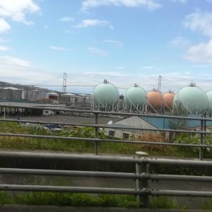 【複製】室蘭桜開花観測ツアー2021年5月2日(1)JXTGエネルギー室蘭フェンス脇