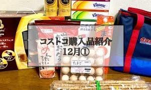 【オススメ】コストコ購入品紹介  12月①