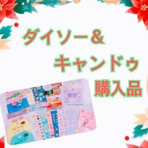 【100均】ダイソー&キャンドゥ購入品