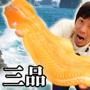 【オススメ】【大量消費】コストコサーモンで3品作った!!
