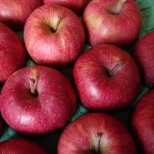 リンゴのお礼