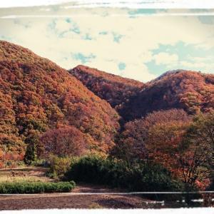短くも色づく季節、ふたりぶらりと、湯と思いに浸る~嫁と車と紅葉狩り~