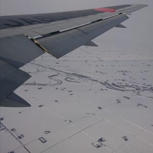 北海道 スノーボード ニセコの雪はフカフカ~♪