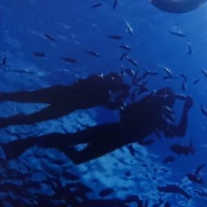 沖縄~青の洞窟~  神秘的&幻想的な碧の世界でシュノーケリング