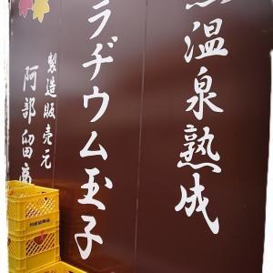 温泉と言えば温泉たまご~飯坂温泉のラヂウム玉子はいかがでしょうか?~