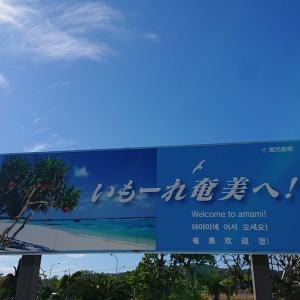 『奄美大島』ダイビング~海の中の光のカーテン