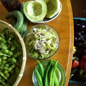 夏野菜の消費に悩む