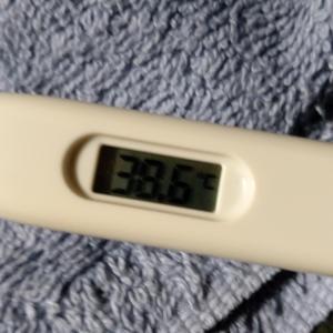 風邪?ネタばかりですみません。