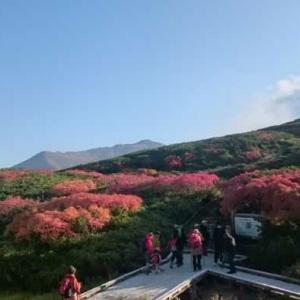 【交通まとめ①】新千歳空港から旭川・旭岳温泉にどうやって行くの?