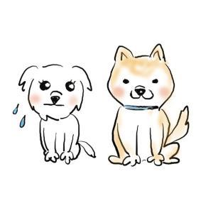 妻が描いた可愛い犬のイラストを見てほしい!