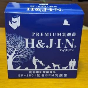 愛犬にエイチアンドジン (H&JIN)Premium乳酸菌を与えた結果!