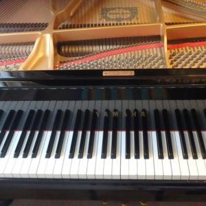 メダカとピアノの音