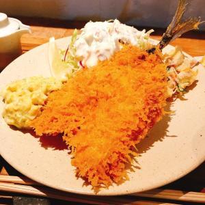 殿堂入りのお皿たち その29 【yuzukiのアジフライ】