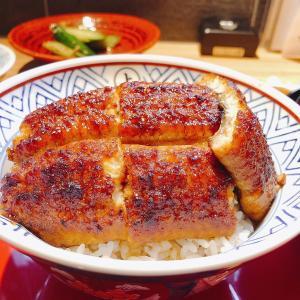 殿堂入りのお皿たち その324【うなふじ の 上鰻丼】