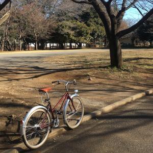 自転車乗って求職活動