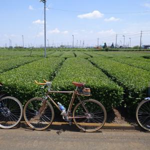 茶畑抜けて桜山展望台へ行ってみた!