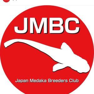 Japan Medaka Breeders Club