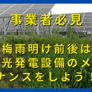 【事業者必見】太陽光発電設備のセルフメンテナンス!梅雨明け前後に目視点検と雑草対策を行おう!