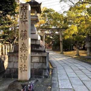 京都旅行~秋の紅葉②~過去旅行編