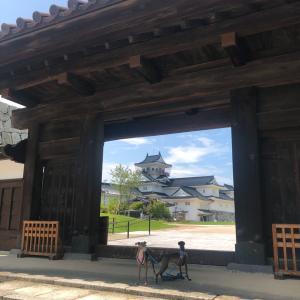 7月はビビのお誕生日旅行⑤~岐阜県(富山城、他)~2019年