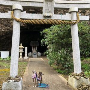 7月はビビのお誕生日旅行⑨~福井県(越前、呼鳥門、越前二の宮劔神社)~2019年