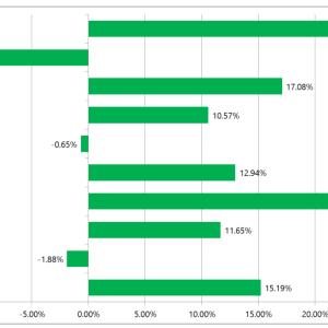 米国株投資の実際のリターンを見たい