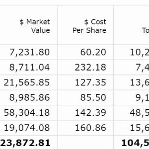 【2020年8月第3W】米国株ポートフォリオの運用状況