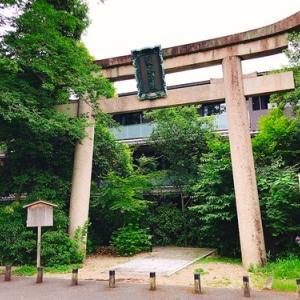 京都プチ一人旅⑮~2日目 緑の生い茂った境内「梨木神社⛩」