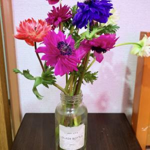 【今日の花瓶】季節を感じるお花