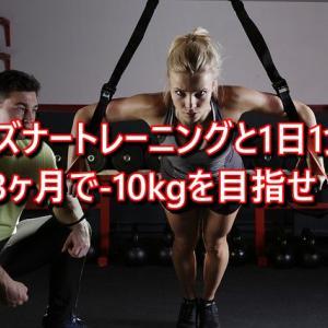 プリズナートレーニングと1日1食なら3ヶ月で-10kgも夢ではない!