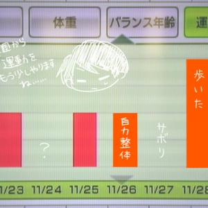 WiiFit12週目