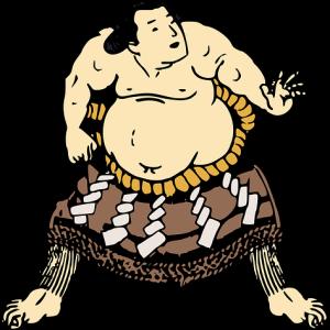 新横綱照ノ富士早くも独走か❔大相撲秋場所の見所、展開を占う❗