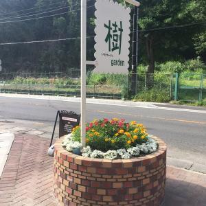鎌倉の樹ガーデン(いつきガーデン)