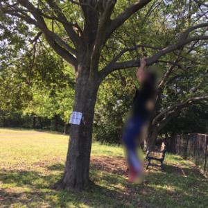子どもが一緒でも公園でできるオススメトレーニング