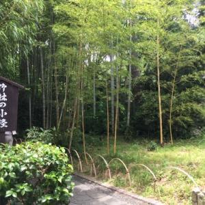 伊豆 修善寺温泉の旅