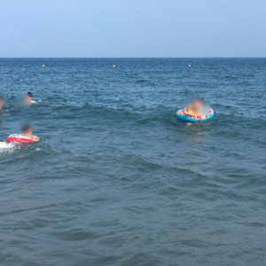 今年の三浦海岸