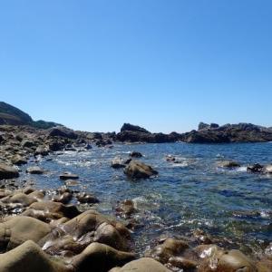 南紀遠征 死滅回遊魚と両側回遊魚採集