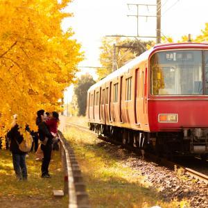 名鉄沿線の秋2019  それぞれの黄葉の楽しみ方