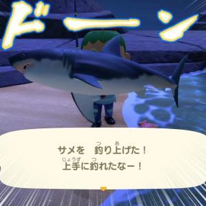 あつまれどうぶつの森 第82話 サメ